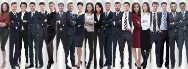 panoramic collage of groups of successful employees.