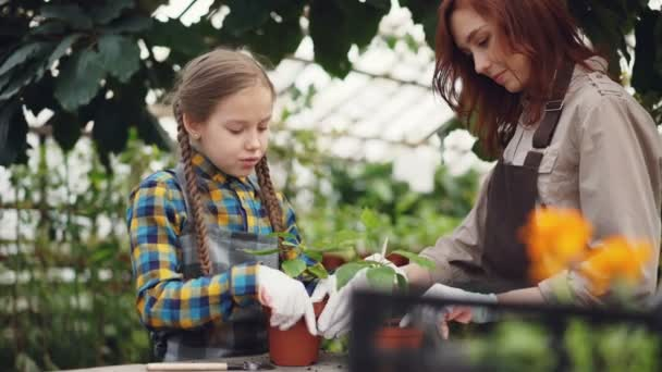 Parent and child in aprons are cultivating soil in plant pots with gardening tools and talking. Happy people, agriculture, family business and hobby concept.
