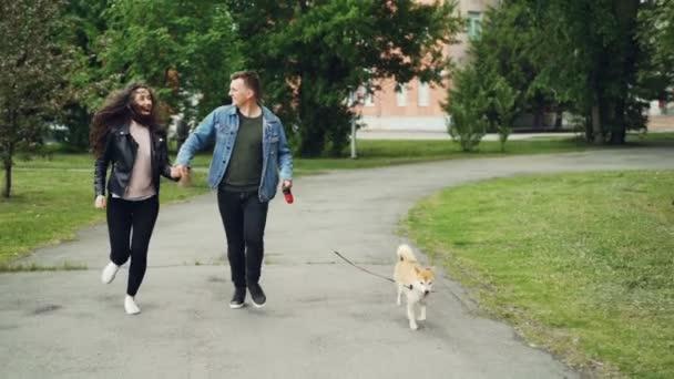 Zpomalený záběr dolly veselé sportovní lidí pes majitelé běží v parku se svými domácími zvířaty a usmívá se. Trávníky, zelené stromy a budovy jsou viditelné.