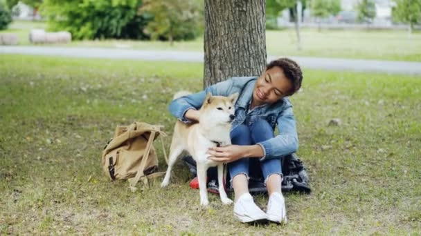 junge afrikanisch-amerikanische Frau streichelt entzückende Welpen, die sich im Park auf dem grünen Rasen ausruhen und mit Liebenswürdigkeit und Anbetung mit Haustieren reden. Konzept Mensch und Tier.