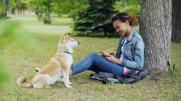 Seitenansicht des ziemlich Mischlinge Mädchen mit Smartphone im Park unter Baum entspannen, während ihre süße Shiba Inu Hund in der Nähe von ihrer Besitzerin sitzt und die Natur genießen.