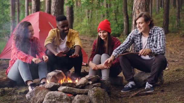 Multiethnic group of friends tourists are sitting around fire talking and laughing, young man is throwing firewood in flame. Camping, friendship and nature concept. — Stock Video © silverkblack #213211598