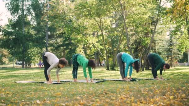 Flexibilní mladé dámy dělají cvičení jógy pak relaxační a dýchání stojící na rohože v parku na podzimní den. Zdravý životní styl, lidé a příroda koncepce