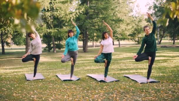 Koncentrované mladé dámy jsou vyvážení na jedné noze s zvedl ruku v strom pozice pak snížení ruce v Namaste a relaxaci. Příroda, rekreace a sportovní koncepce