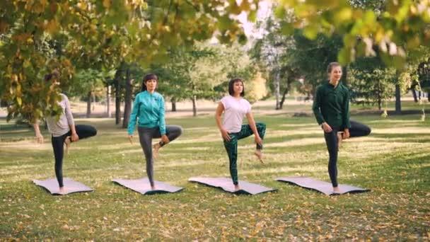 Jóga diákoknak csinálnak egyensúlyozó gyakorlatok őszi nap a parkban szabadtéri órákon szakmai oktató irányításával. Nők a viselése divatos sportruházat