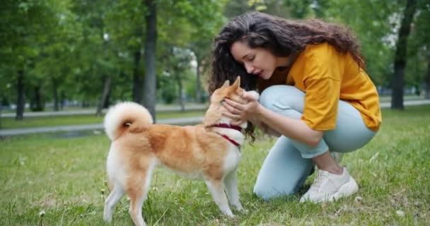 junge Frau spricht mit Hund und berührt dann lächelnde Nasen im grünen Park