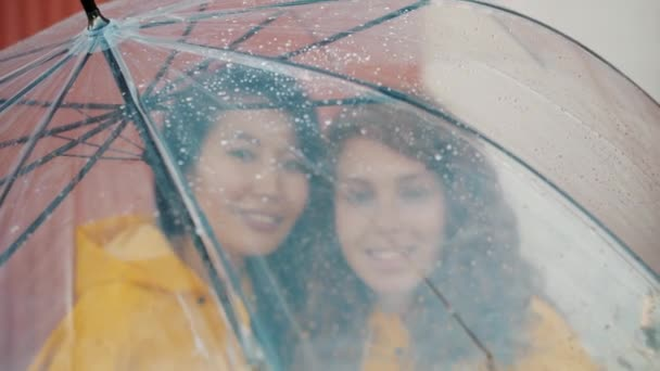 Close-up of pretty girls in raincoats under umbrella standing together smiling