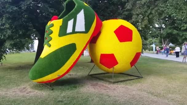 Bylinné boty a fotbalový míč