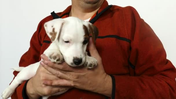 Man in in an orange sweater holds a puppy in his arms.