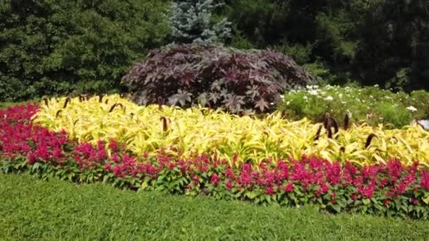 Červená květinová postel v zahradách