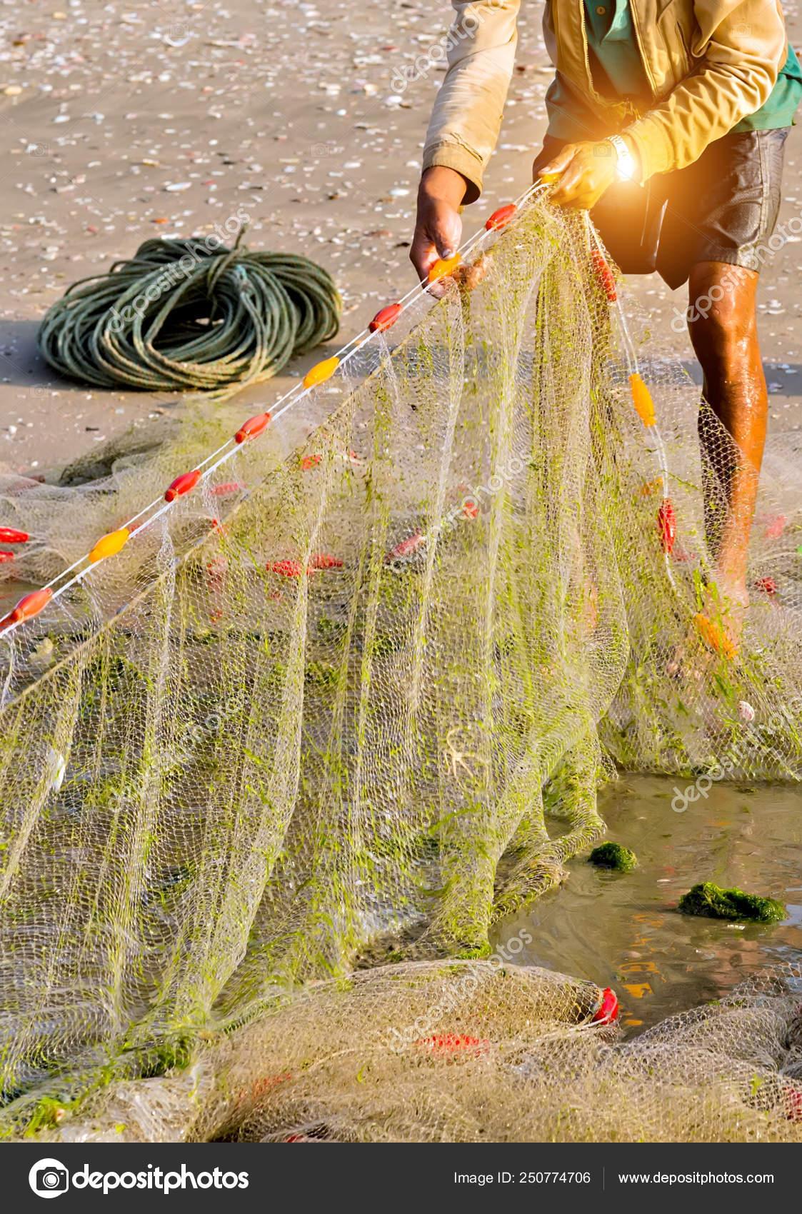 персонажах амнезии найти фотографию вьетнамка в рыболовных сетях омлетом очень вкусные