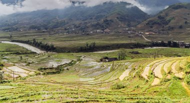 rice terraced agriculture field village in SA PA, Northwest Vietnam
