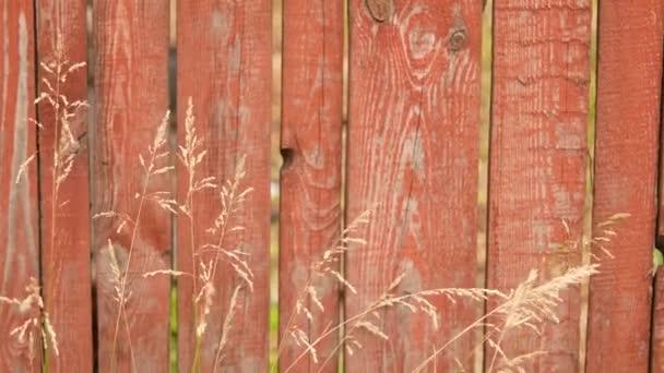 Dřevěný plot a trávu na louce v obci ráno