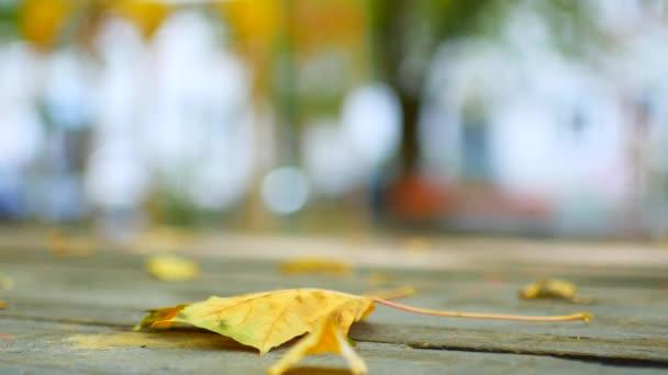 Podzimní javorové listy na dřevěný stůl .