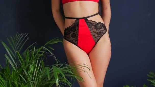 Szép szexi lány modell csipke a vörös és fekete fehérnemű