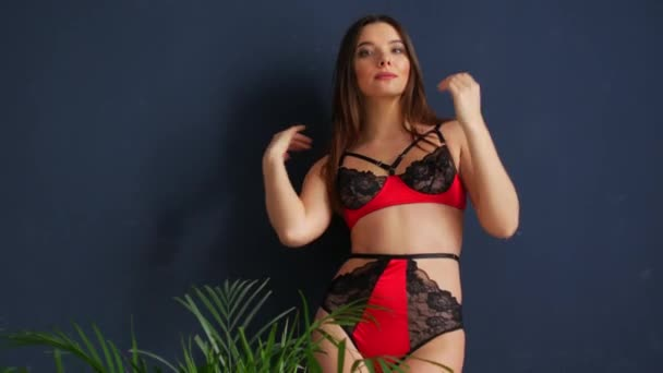 Beautiful sexy girl model in lace red and black lingerie.