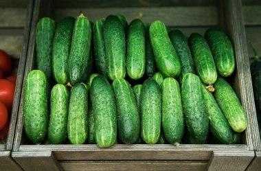 Footage of green fresh cucumbers in wooden box on sale at grocery food store.Buy natural ingredients for healthy eating.