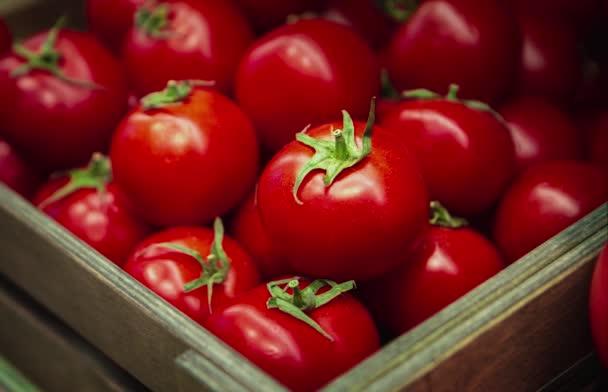 Nahaufnahmen von frischem, reifem Tomatengemüse in der Schachtel im Lebensmittelgeschäft. Kaufen Sie natürliche gesunde Lebensmittel igredients Feind gesunde Ernährung und guten Geschmack.