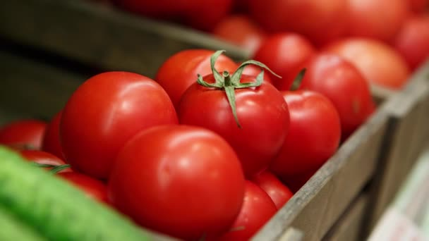 Close up footage of fresh ripe tomato vegetables in the box at grocery food store.Buy natural healthy food igredients foe healthy eating and good taste.
