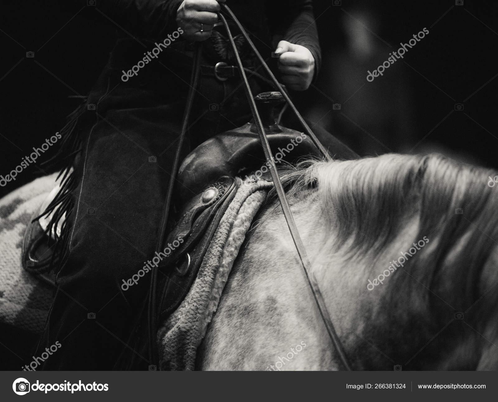 Rider On A Horse In Western Style Stock Photo C Mari Art 266381324