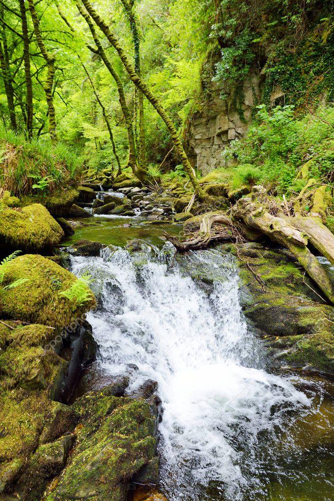 stormy little waterfall near Torc Waterfall, Killarney National Park, Ireland.