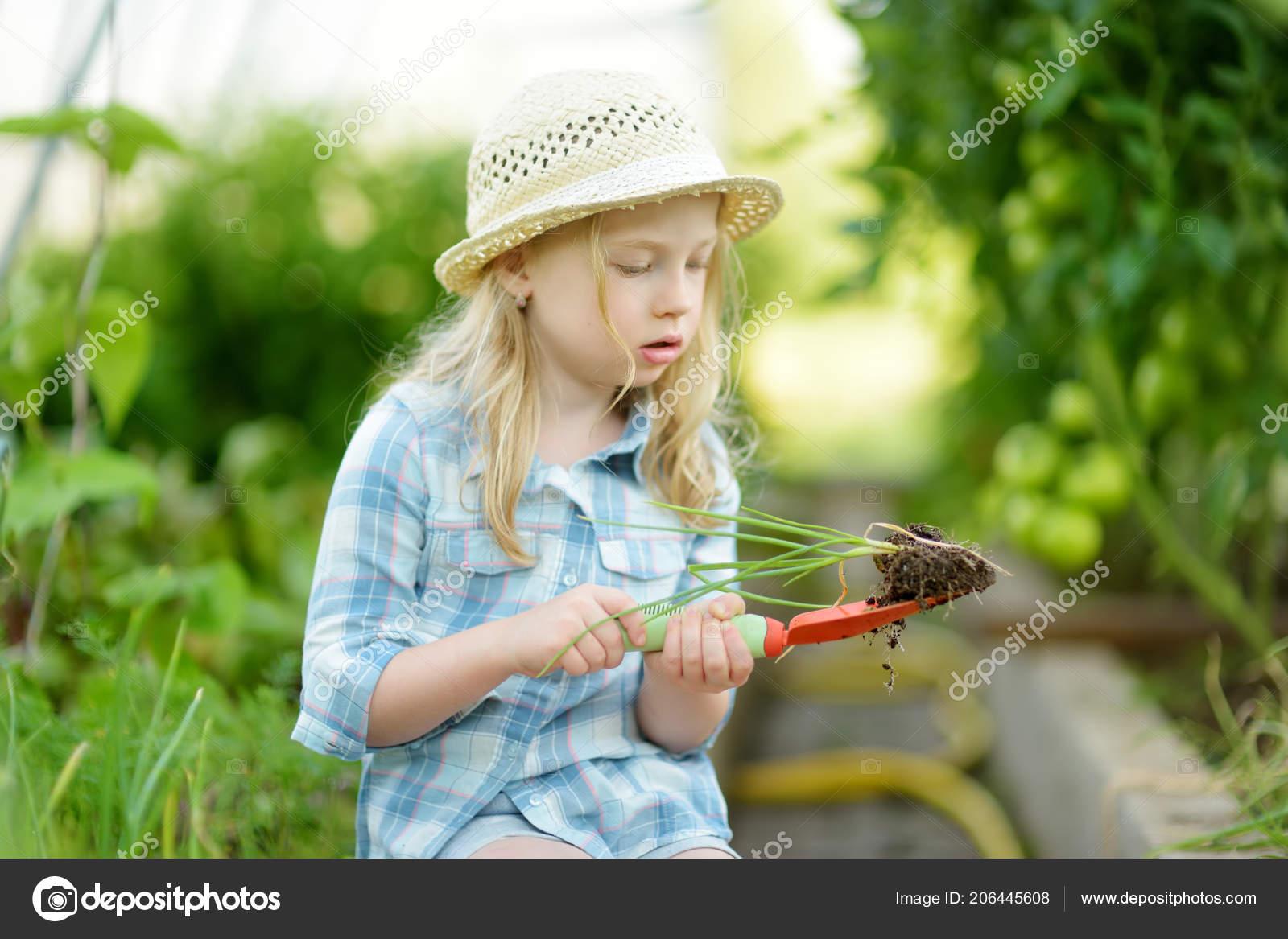 Bambina adorabile indossando il cappello di paglia che gioca con suoi  attrezzi da giardino giocattolo in una serra sulla giornata di sole estivo. 75f7baf3a4a0