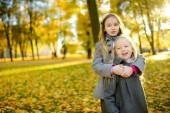Fotografie Dvě roztomilé holčičky baví na krásný podzimní den. Šťastné děti hrají v podzimním parku. Děti shromažďování žlutá padajícího listí. Podzimní aktivity pro děti