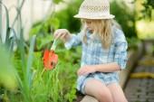 Fotografie Entzückende kleine Mädchen tragen Strohhut spielt mit ihrem Spielzeug Gartengeräte in einem Gewächshaus an sonnigen Sommertag. Gartenarbeit-Aktivitäten für kleine Kinder