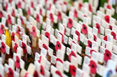 LONDON, UK - NOVEMBER 19, 2017: Poppy crosses at the Westminster Abbey Field of Remembrance, on Remembrance Day, to remember military and civilians who have died since World War I.
