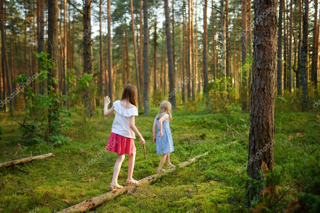 Two cute young sisters having fun during forest hike on beautiful summer day