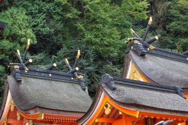 The roof of Kumano Hayatama Taisha shrine. Shingu. Wakayama. Jap