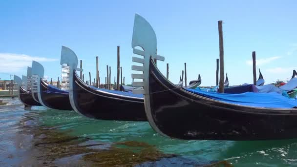 Schnauzen vertäut in einer Reihe Gondeln in Venedig, Italien