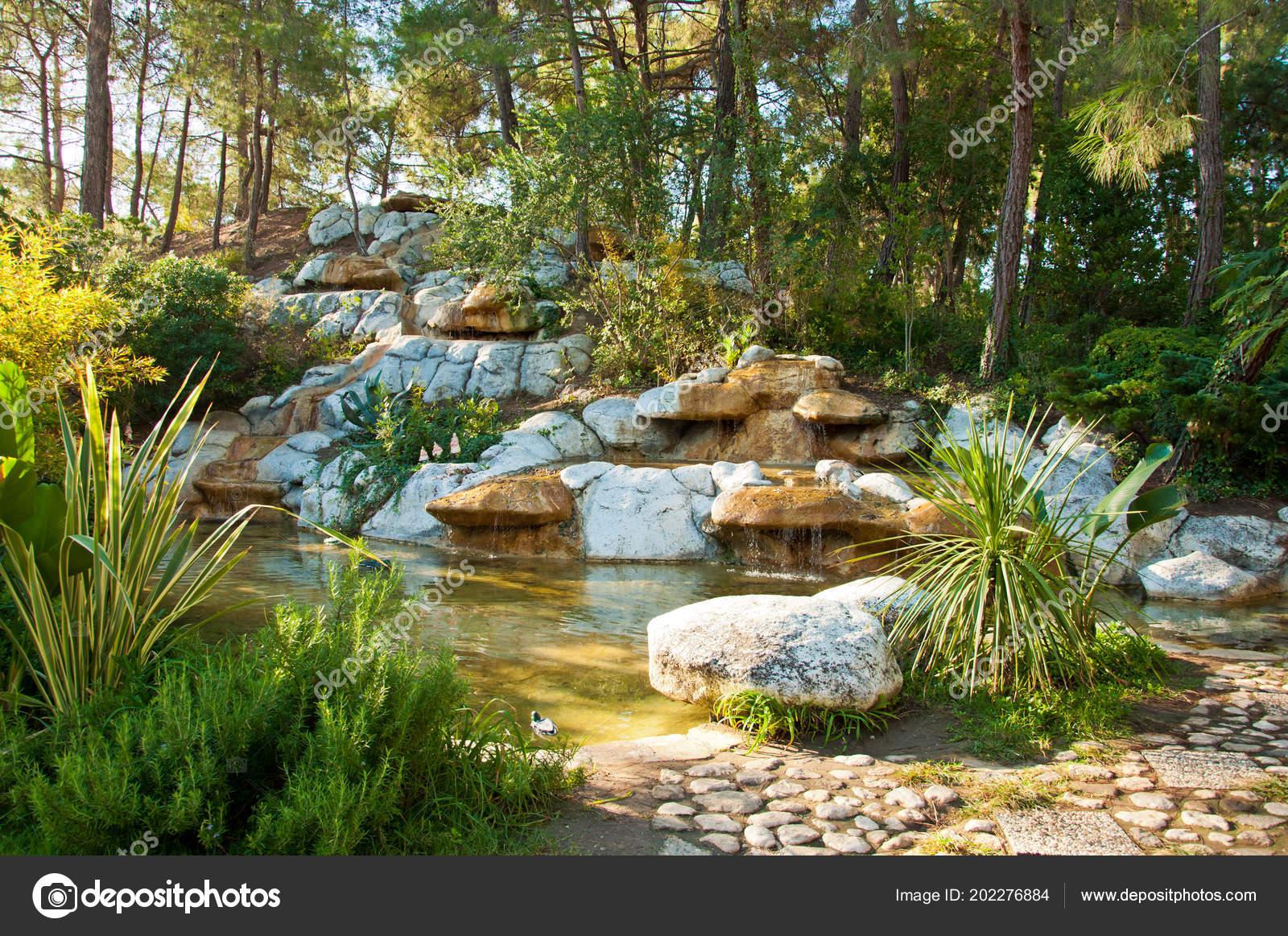 Disegno paesaggio tropicale nel giardino vista del piccolo for Piccolo stagno