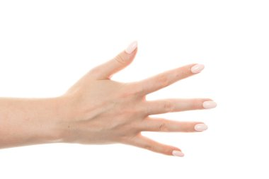 female hand showing the gesture with five fingers is isolated on a white background