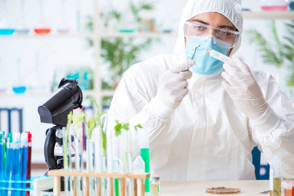 Male biochemist working in the lab on plants