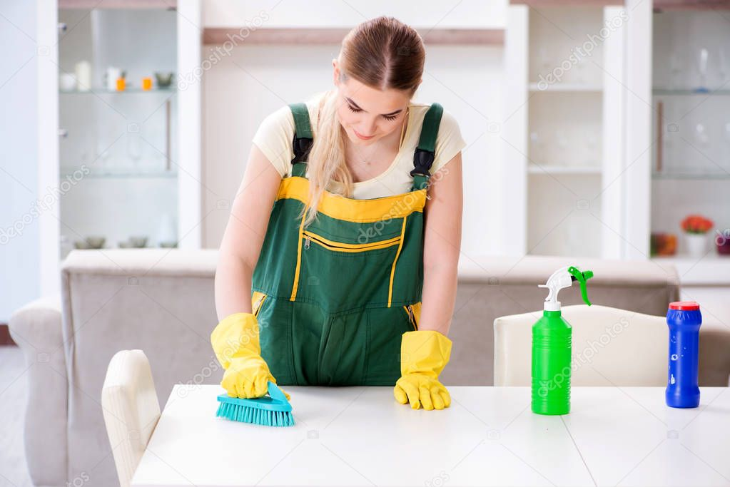 Professional cleaner cleaning apartment furniture