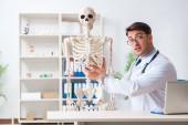 Yong männlicher Arzt mit Skelett isoliert auf weiß