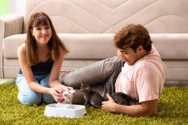 Young family with kitten playing at home