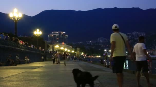 YALTAS - JUNE 22, 2015: people walking on promenade in Yalta city in night. Yalta is resort city on the north coast of the Black Sea on the Crimean peninsula.