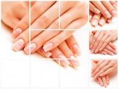 Fotografie Trendy pěstěné nehty na bílém pozadí