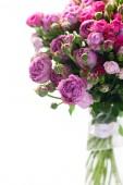 Pastello viola rose in vaso di vetro isolato su priorità bassa bianca