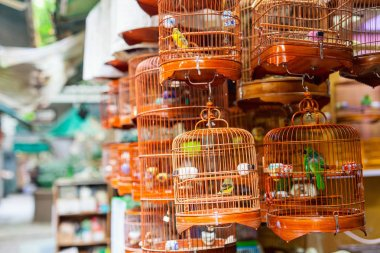 Birds in cages for sale at Birds market, Kowloon Hong Kong, popular tourist destination.