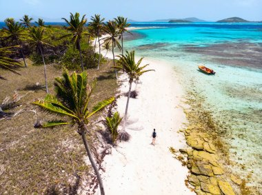 Aerial drone view of tropical islands and turquoise Caribbean sea of Tobago cays in St Vincent and Grenadines