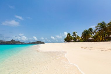 Idyllic tropical beach with white sand, palm trees and turquoise Caribbean sea water on exotic island in St Vincent and the Grenadines