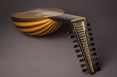 Lute of the 17th century. Close-up detail