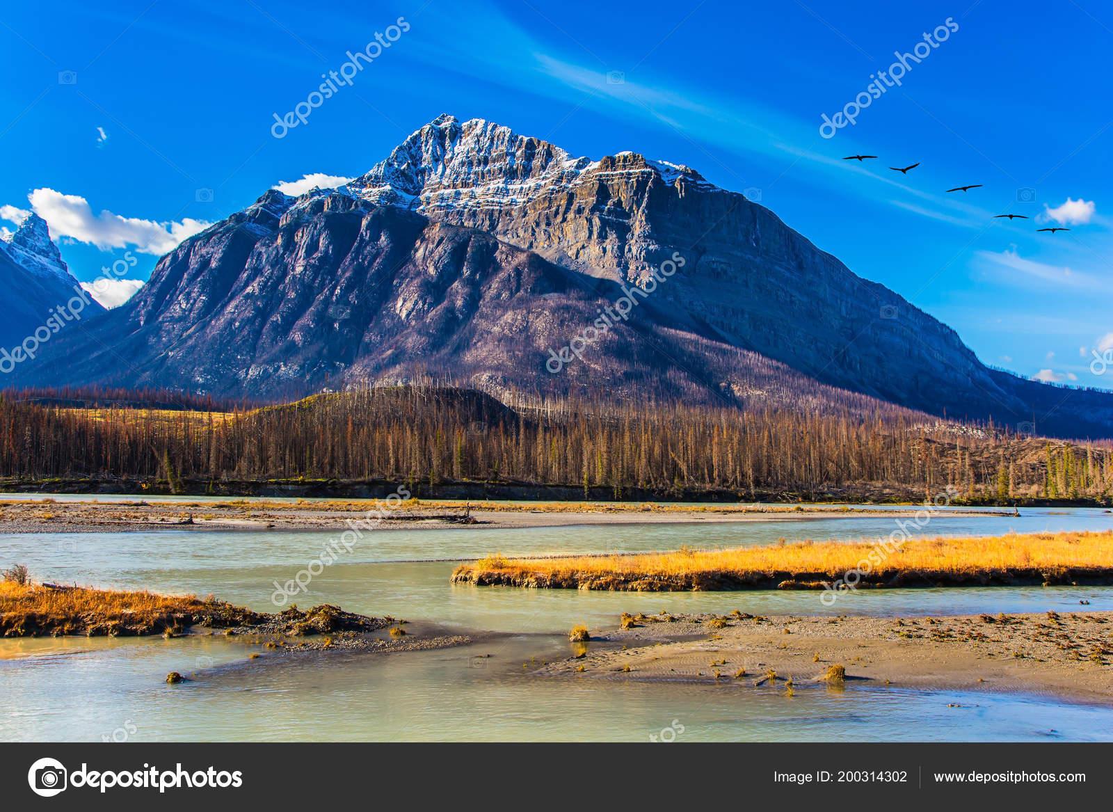 Altweibersommer Den Bergen Kanadas Ufer Des Sees Abraham Wald Herbst