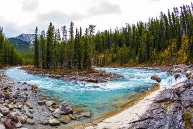 Sanvapta Great Falls in Jasper National Park. Autumn trip to Canada. The concept of extreme and ecological tourism. Small island in emerald green waters of the river