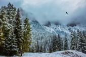 Fotografie Přišla zima. Nový rok je ještě brzy. Na Alpine Pass Giau poprvé sněžilo