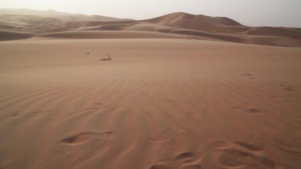 Wind treibt Sand über die Rub al-Khali Wüste vereinigte arabische Emirate Stock Footage Video
