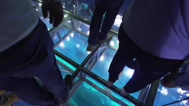 Dubai, UAE - April 09, 2018: People stand on the glass floor and watch the fish under their feet in the Aquarium in Dubai Mall stock footage video